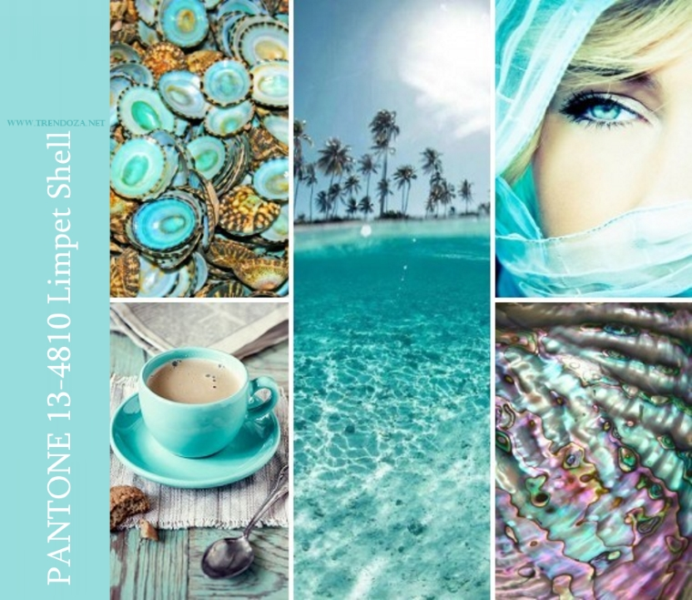 PANTONE 13-4810 Limpet Shell1