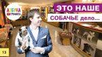 Бизнес на стрижке собак. Первые груминг-салоны в Москве 2002 — 2017гг.
